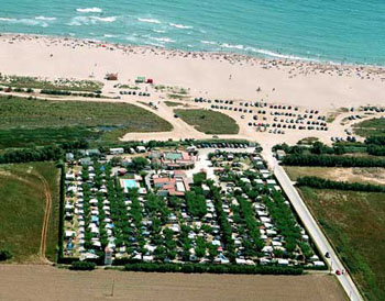 Photo of the environment Camping LA GAVIOTA in Sant Pere Pescador