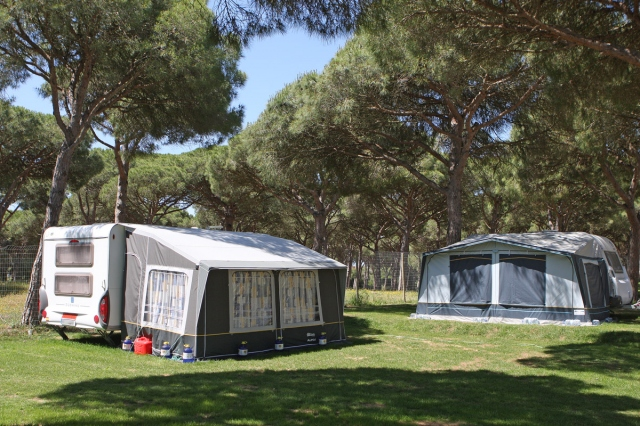 Photo of the environment Camping PINAR SAN JOSÉ in Barbate