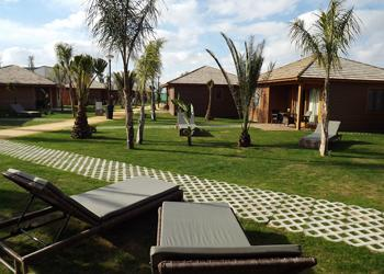 Photo of the environment Camping MARJAL COSTA BLANCA ECO RESORT in Crevillent