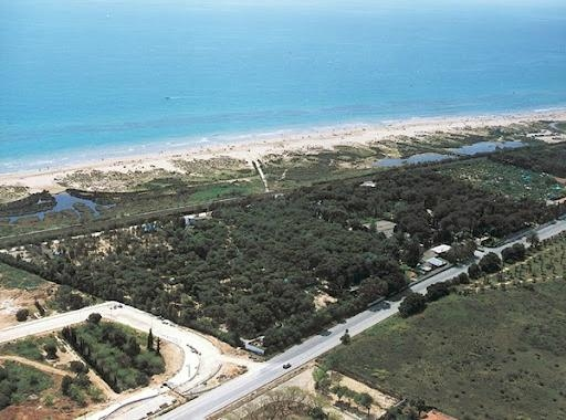Photo of the environment Camping LA NORIA in Torredembarra
