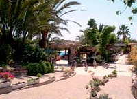 Photo of the environment Camping BENISOL in Benidorm