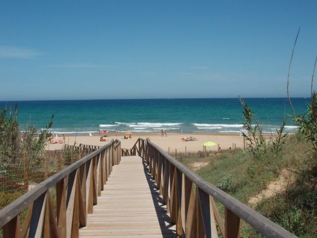 Photo of the environment Camping PALM MAR in Guardamar Del Segura