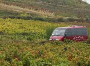 La Rioja: vino, historia y cultura ¡en autobús!