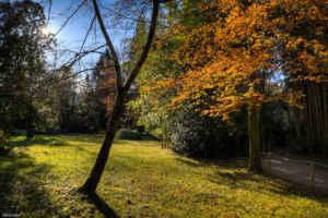 Una visita al parque natural del Señorío de Bértiz, en Navarra