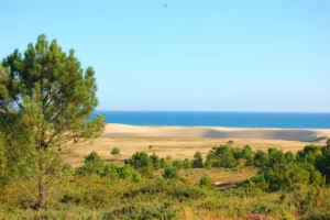 Descubriendo la duna móvil de Galicia