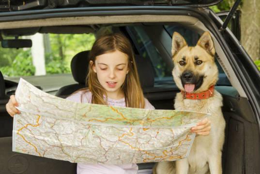 campings para ir con mascota