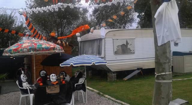 camping-el-arbolado