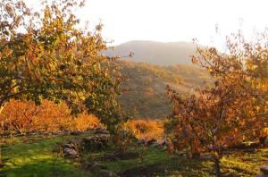 Paisajes de cuento y actividades en la Otoñada en el Valle del Jerte