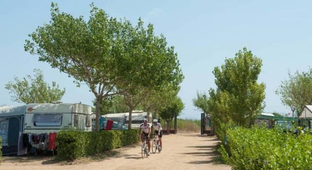 Bici camping Playa Brava