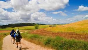 Iratxe, un camping para descubrir la Zona Media de Navarra
