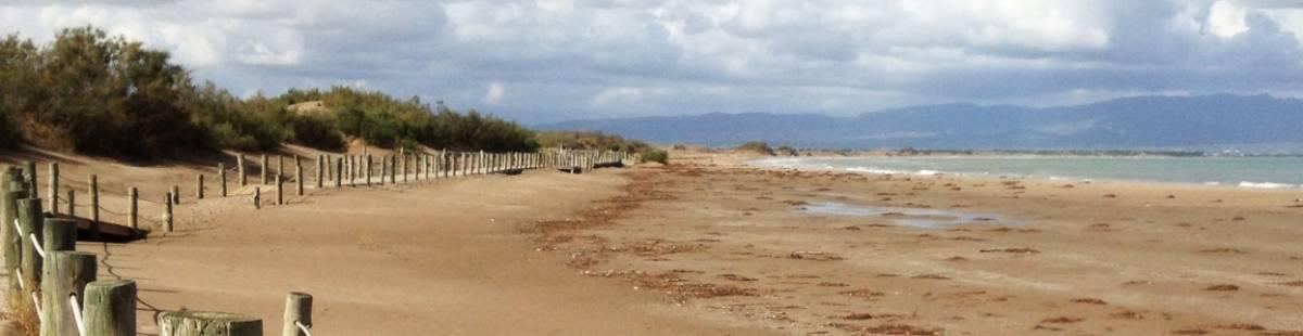 Playa-Bassa-de-la-Arena