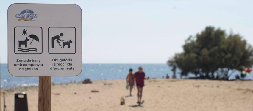 playa-para-perros-en-cambrils