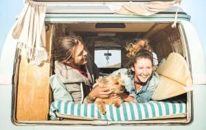 Un camping y una playa para ir con mascotas en Mazarrón