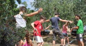Ecocamp Vinyols clases de circo