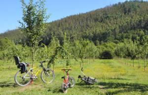 camping asturias expocamp