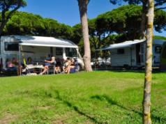 camping pinar san jose