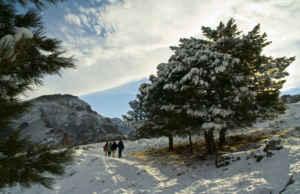 Sierra de Granada