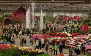Festival de floricultura