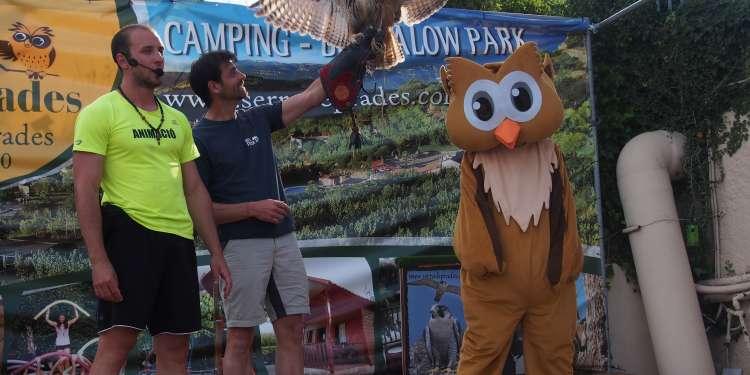 Owly, la mascota de Serra de Prades, con una de las aves rapaces del camping.