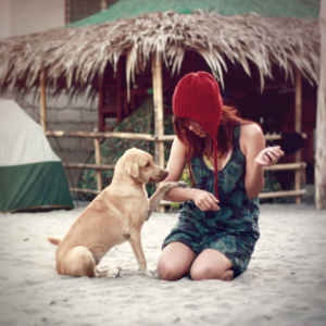 De vacaciones con la mascota
