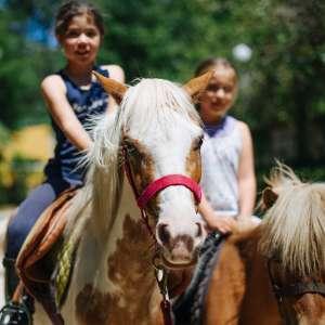 Paseos a caballo para los niños.