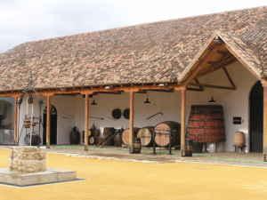 LXI Fiestas del Vino en Valdepeñas