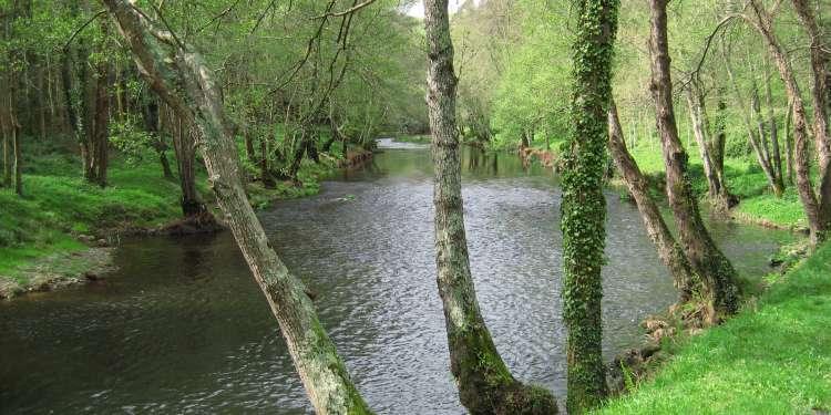 Rio Eo a su paso por San Tirso de Abres