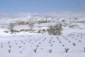 En Navidades, ¡con los niños a La Rioja!