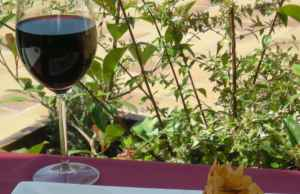Turismo rural y enológico en Lleida