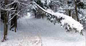 ¡A esquiar en pareja en Lleida!