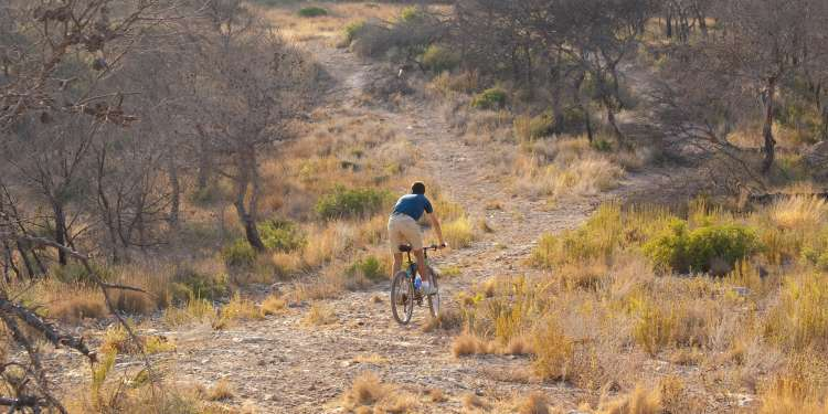 Oropesa en bicicleta