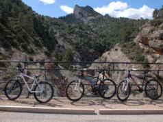 Naturaleza en la Vía Verde Terra Alta