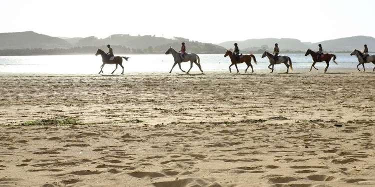 playa del regatón (1)