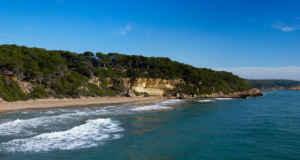Naturaleza en el parque natural Punta de la Mora