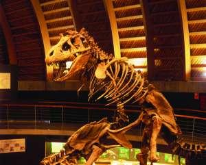 Dinosaurios en Asturias