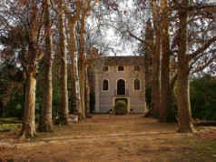 Otoño en Navarra, tiempo de vendimia