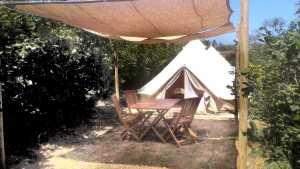 tiendas-vinyols-camp