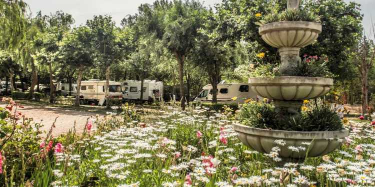 camping-don-quijote
